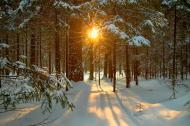 December Solstice Facts