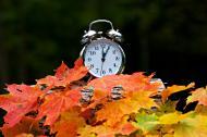 Daylight Saving Time � DST
