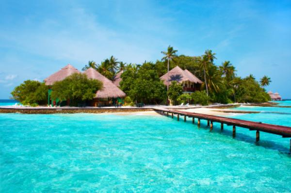 Island of Paradise. White sand beaches with coco-tree and crystal blue water. Maldives.