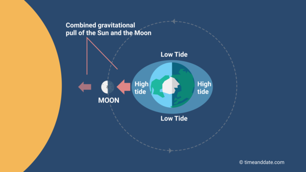 The Moon Causes Tides On Earth
