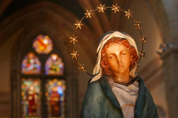 Feast of the Immaculate Conception in the United States