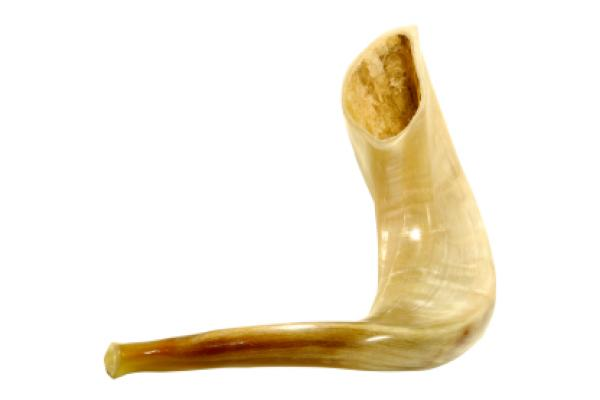 The shofar is an instrument that is blown on Jewish observances, such as Yom Kippur.