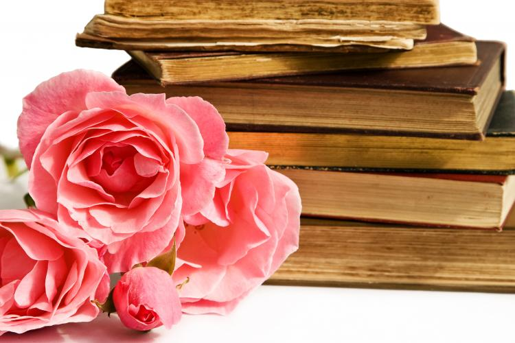 Isolated pile of books and pink roses
