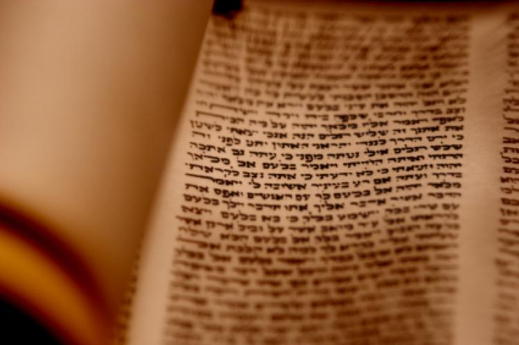 Torah Scroll Closeup