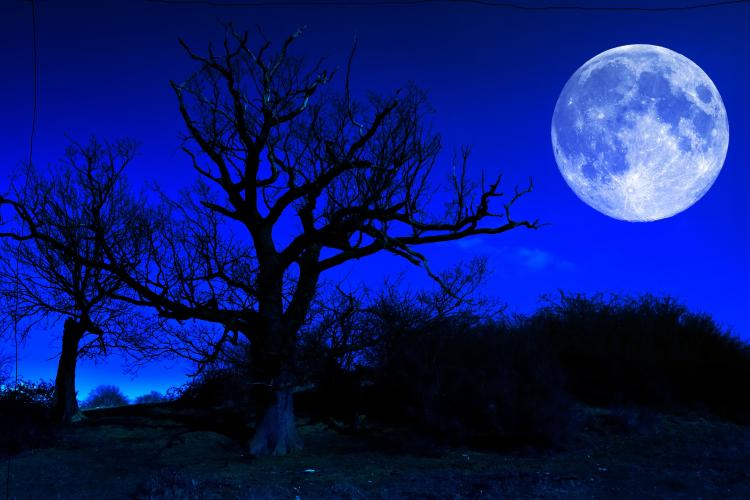 Friday July 2015 Rare Blue Moon Comes Full