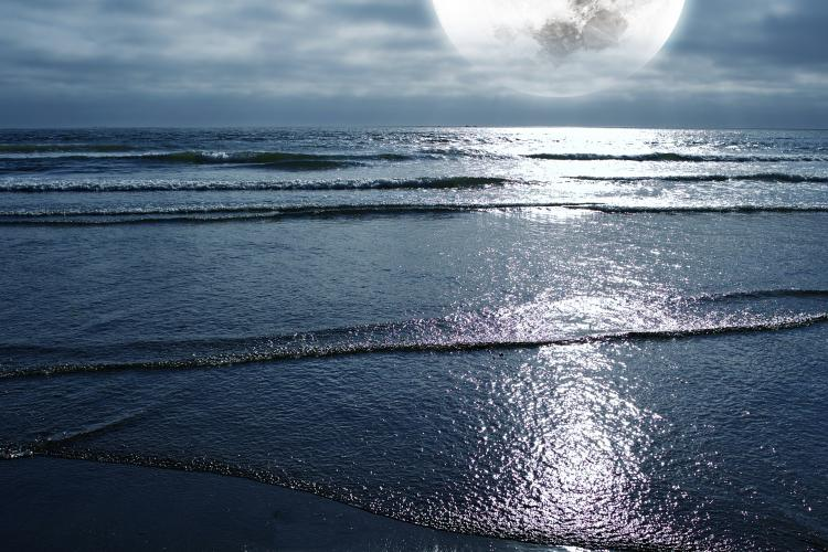 Отцвели цветы, падают листья, птицы молчат, лес пустеет и затихает.ОСЕНЬ. - Страница 6 Tides-and-the-moon-50189198