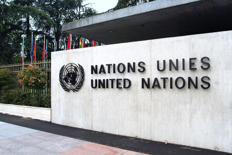 The UN focuses on a specific issue every year through its International Year.