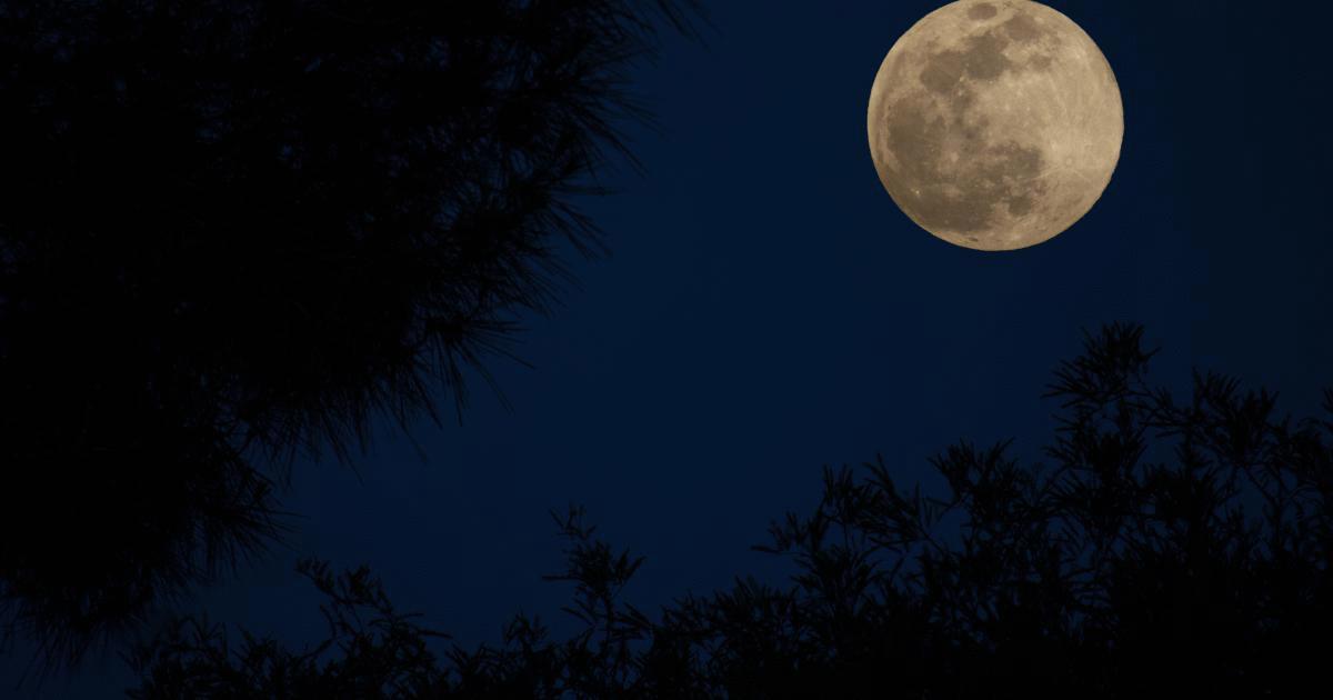 penumbral lunar eclipses
