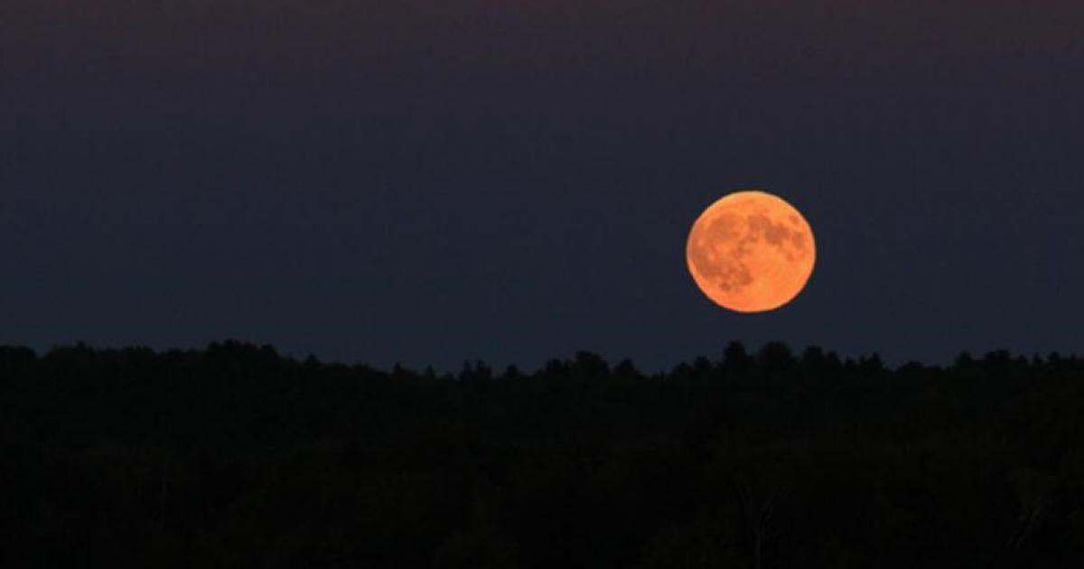 Total Lunar Eclipse 2018 Pictures