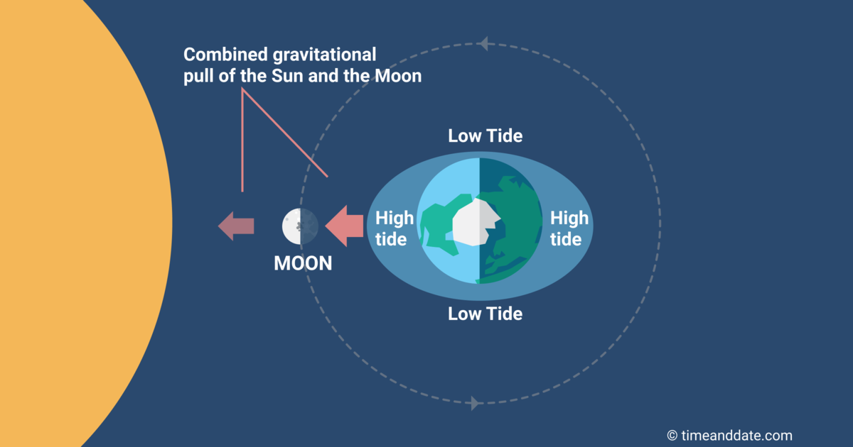 tides-new-moon.png?1