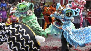 Chinese lions dance to the firecrackers in Chinatown of Washington D.C. for the annual Chinese New Year celebration.