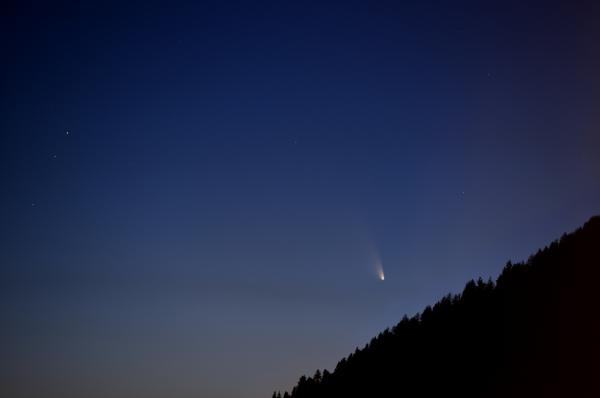 Comet C/2011 L4 PanSTARRS on clear sky with forest in the foreground.