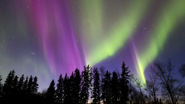 Colorful northern lights in Alberta, Canada.