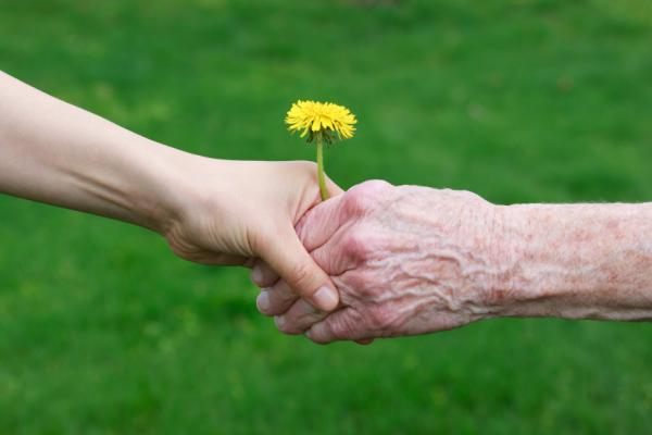 Short Paragraph on Respect Your Elders