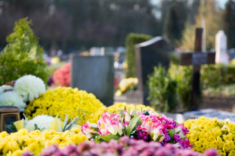 Flowers in Cementary