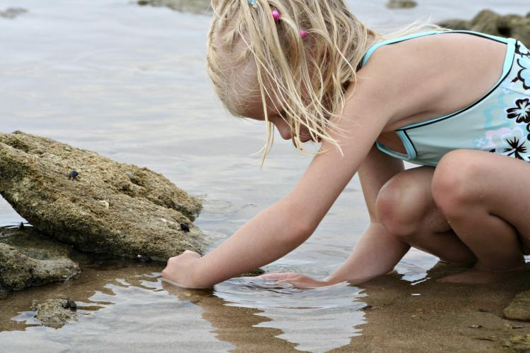 Girl in tide pool collecting rocks.
