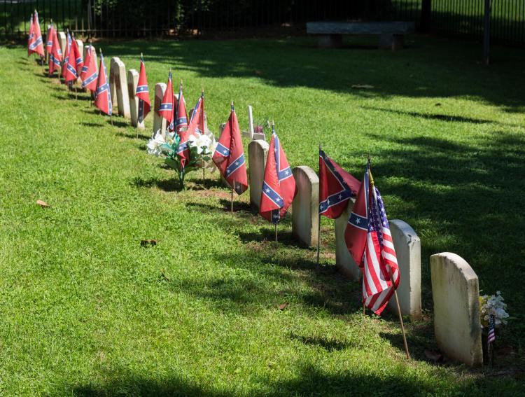 Confederate Memorial Day in th...
