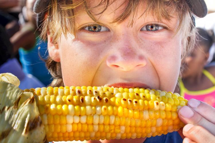 Young boy eating a corn on the cob.