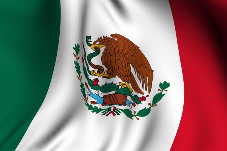 photo regarding Mexican Flag Eagle Printable identify Flag Working day inside Mexico