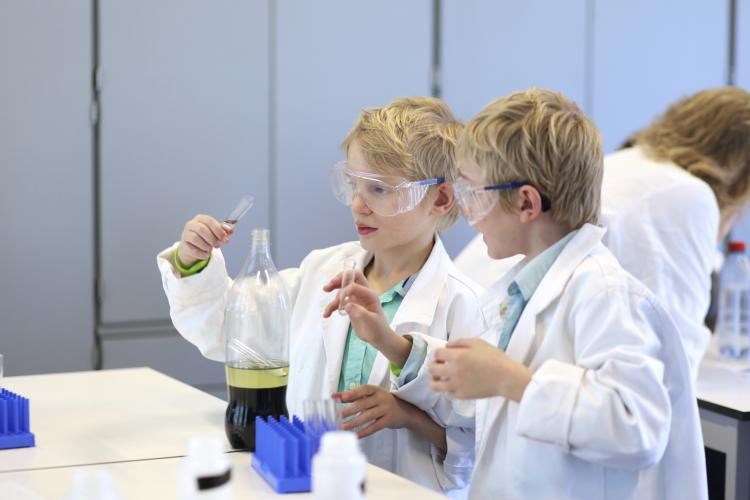 Two school boys collaborating during chemical lesson in lab.