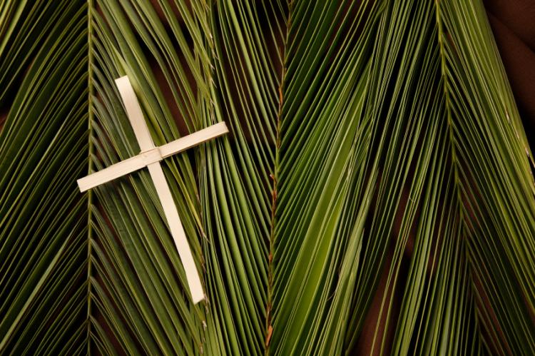 A small wooden cross on top of palm leaves.