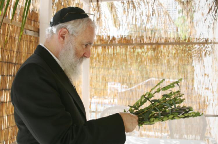 Sukkot 2011: Dates, Customs, Prayers Explained | The Huffington Post