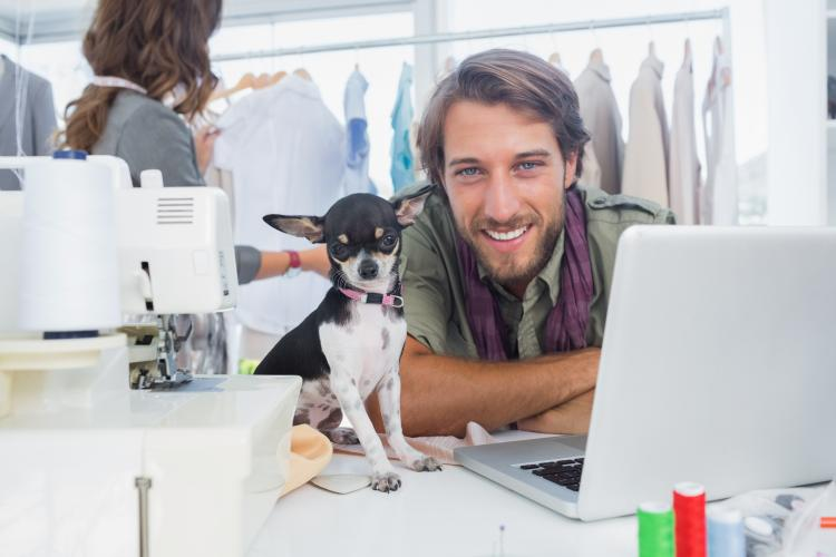 Fun Holiday Take Your Dog To Work Day