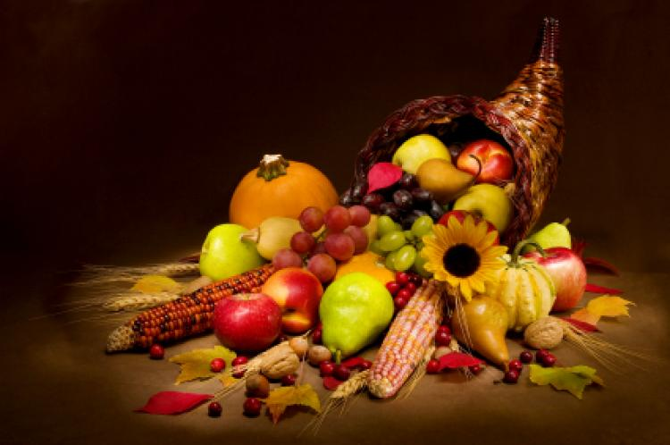 Image result for thanksgiving is for giving thanks activities