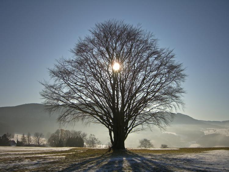 What and When is Winter Solstice?