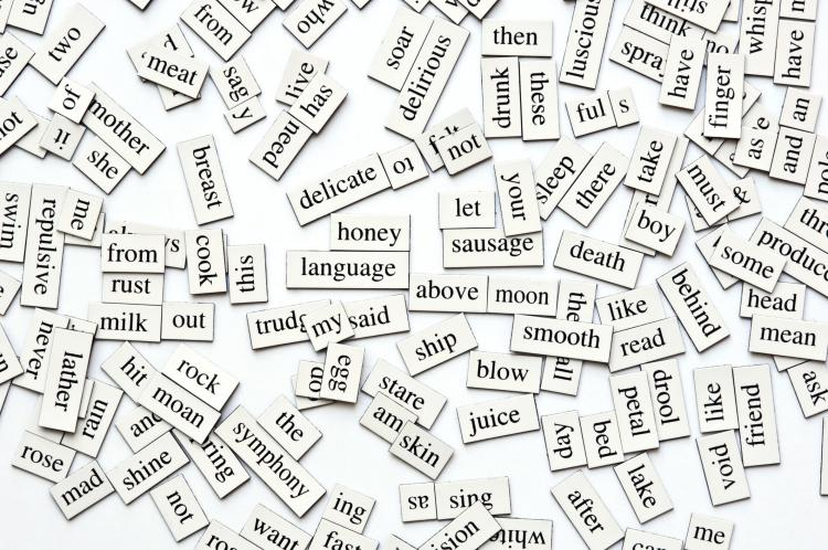 A collection of magnetic words.