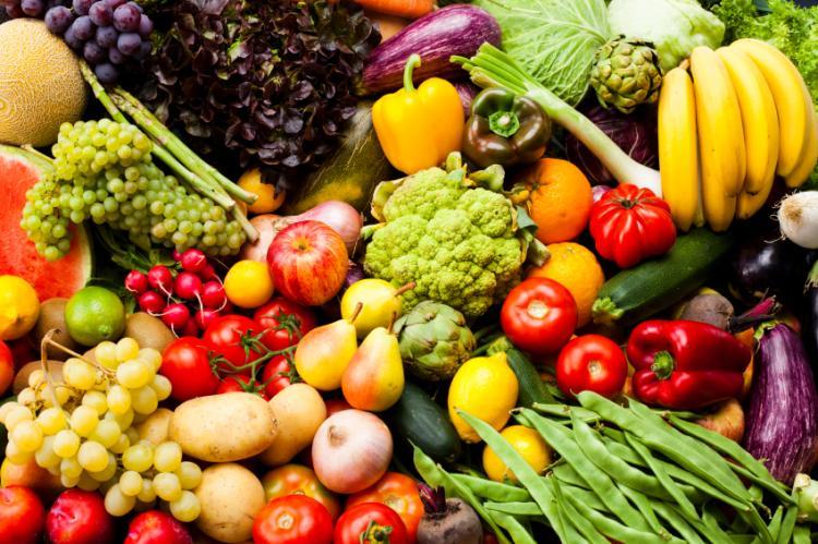http://hrvatskifokus-2021.ga/wp-content/uploads/2020/10/world-food-day.jpg