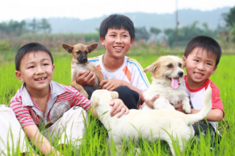 Smiling Asian children with their pet dogs.
