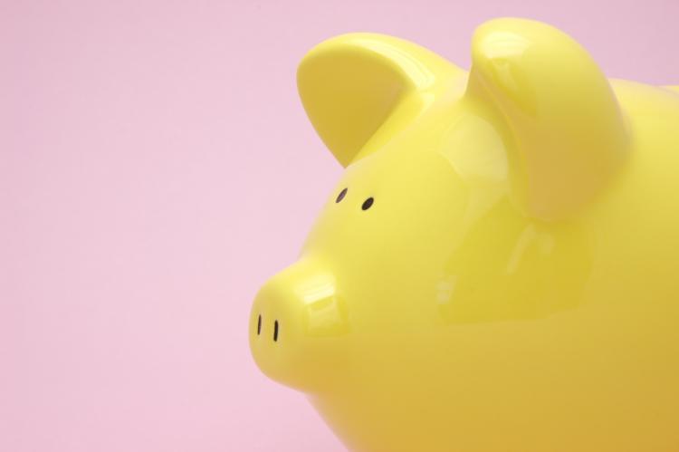 Fun Holiday Yellow Pig Day