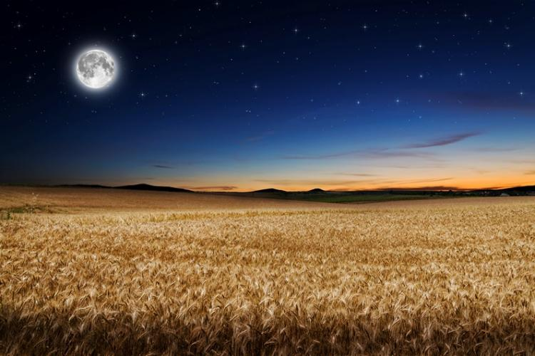 Harvest Moon Is The Northern Hemisphereu0027s First Fall (autumn) Full Moon.