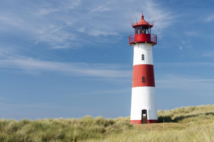 Fun Holiday Lighthouse Day