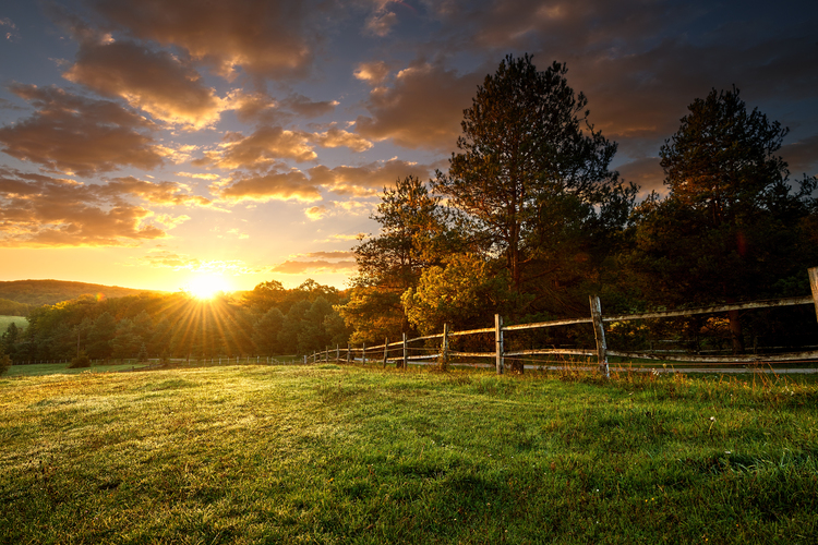 Picturesque landscape of a ranch at sunrise.