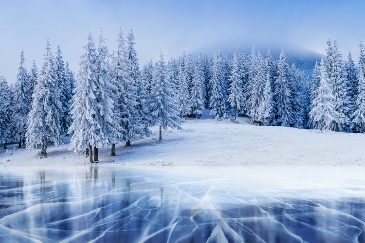 google ehrt den winteranfang 2018 mit einem eisigen schnee. Black Bedroom Furniture Sets. Home Design Ideas