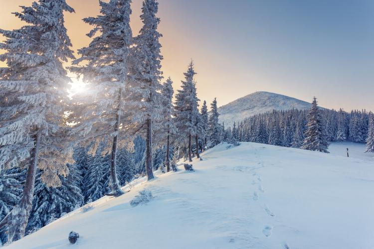 Wintersonnenwende 2021 Uhrzeit